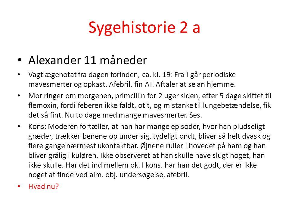 Sygehistorie 2 a Alexander 11 måneder