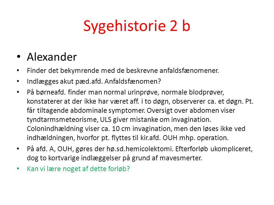 Sygehistorie 2 b Alexander