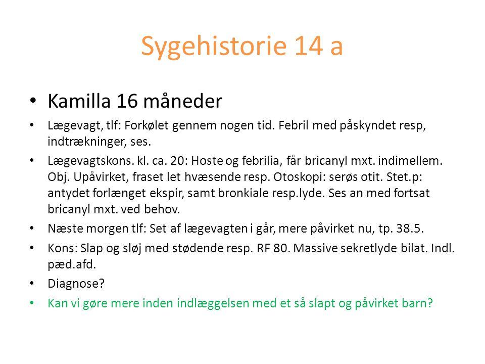 Sygehistorie 14 a Kamilla 16 måneder