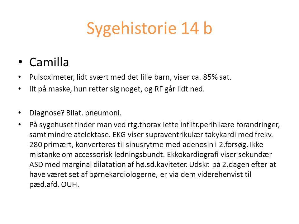 Sygehistorie 14 b Camilla