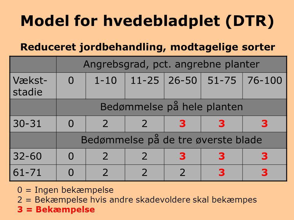 Model for hvedebladplet (DTR)