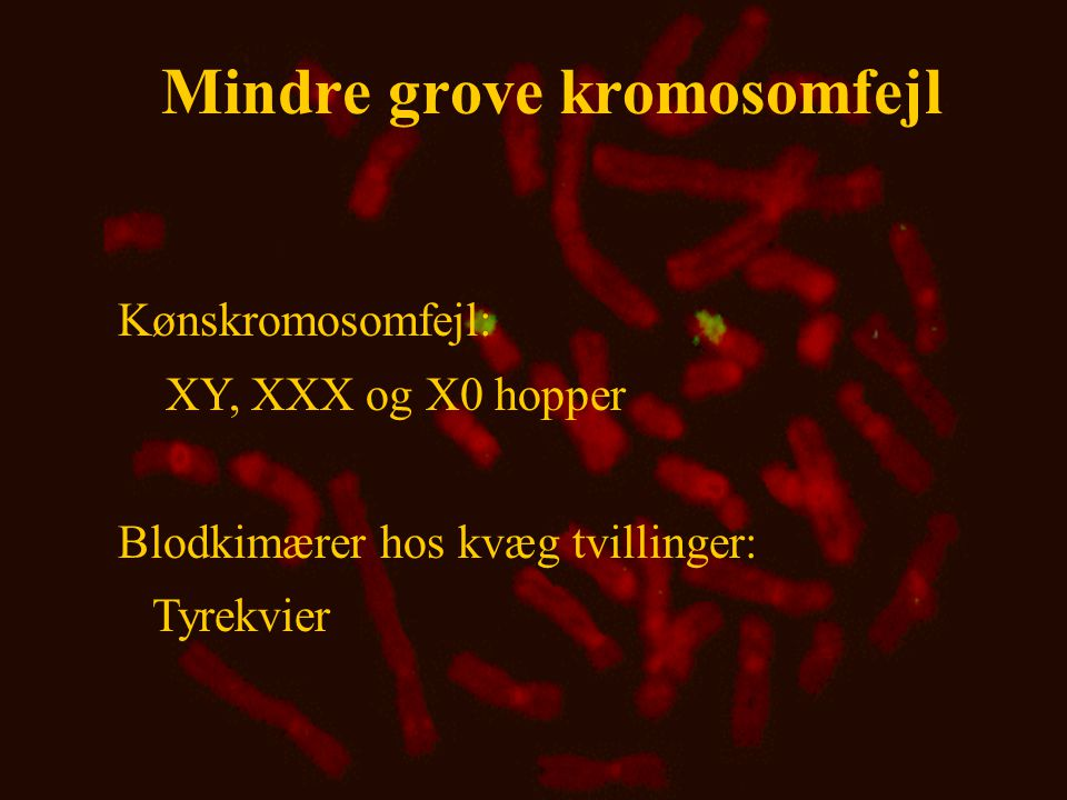 Mindre grove kromosomfejl