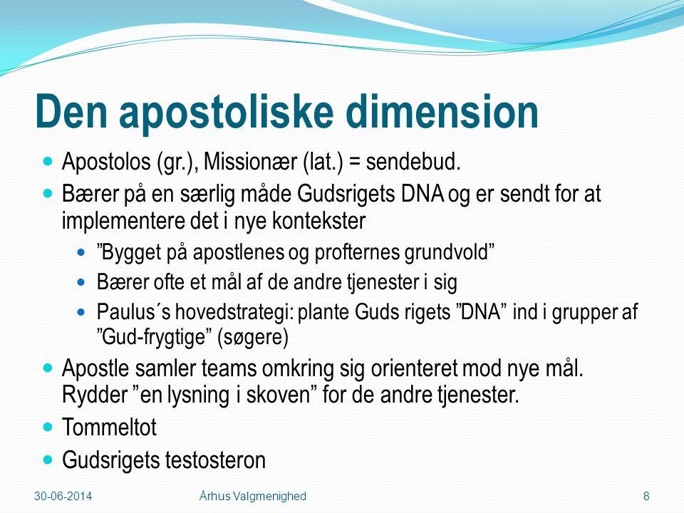 Den apostoliske dimension
