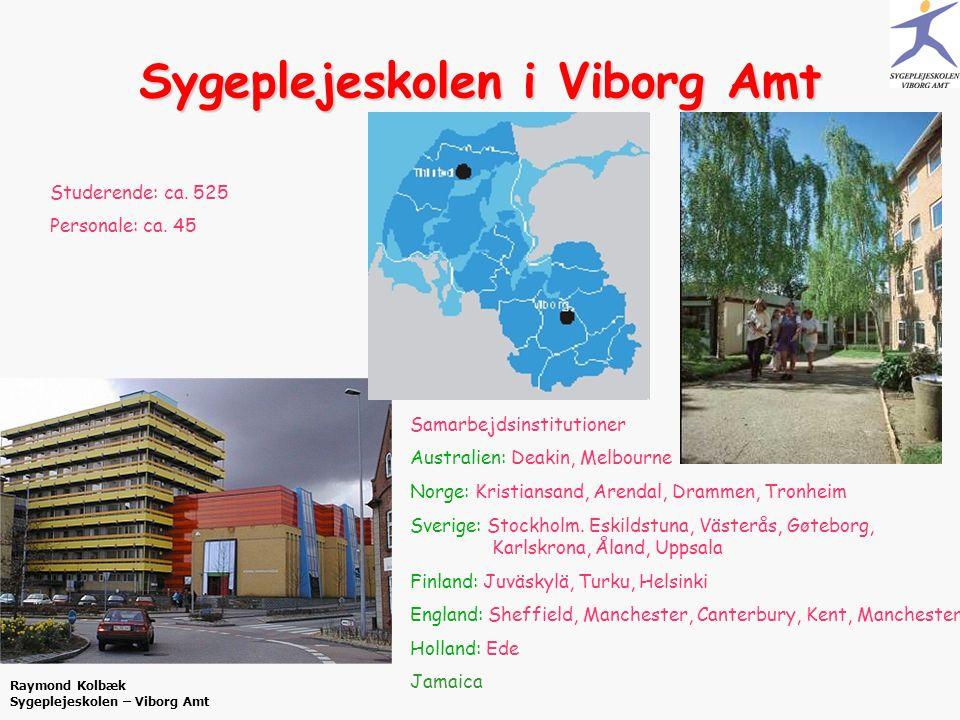 Sygeplejeskolen i Viborg Amt