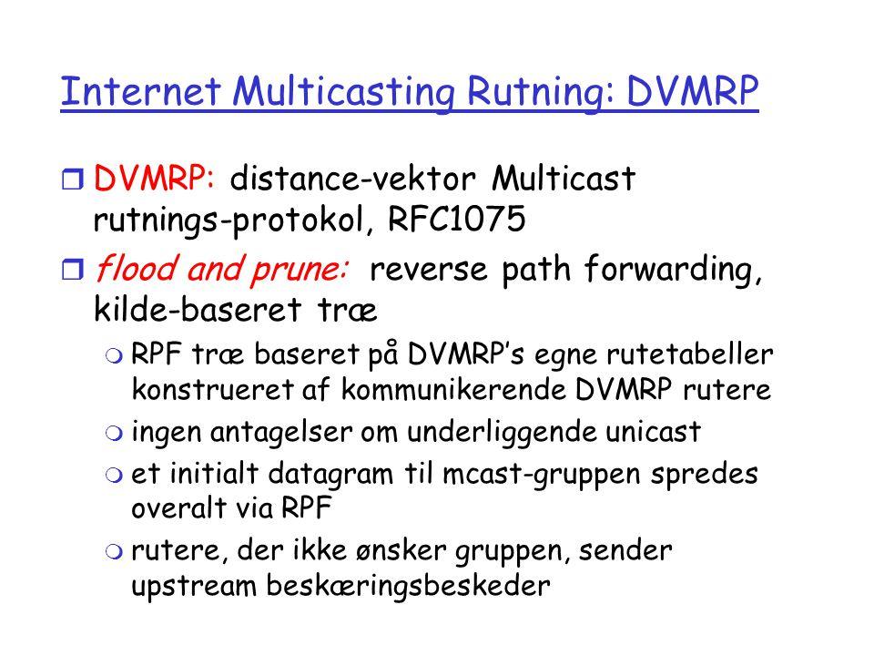 Internet Multicasting Rutning: DVMRP