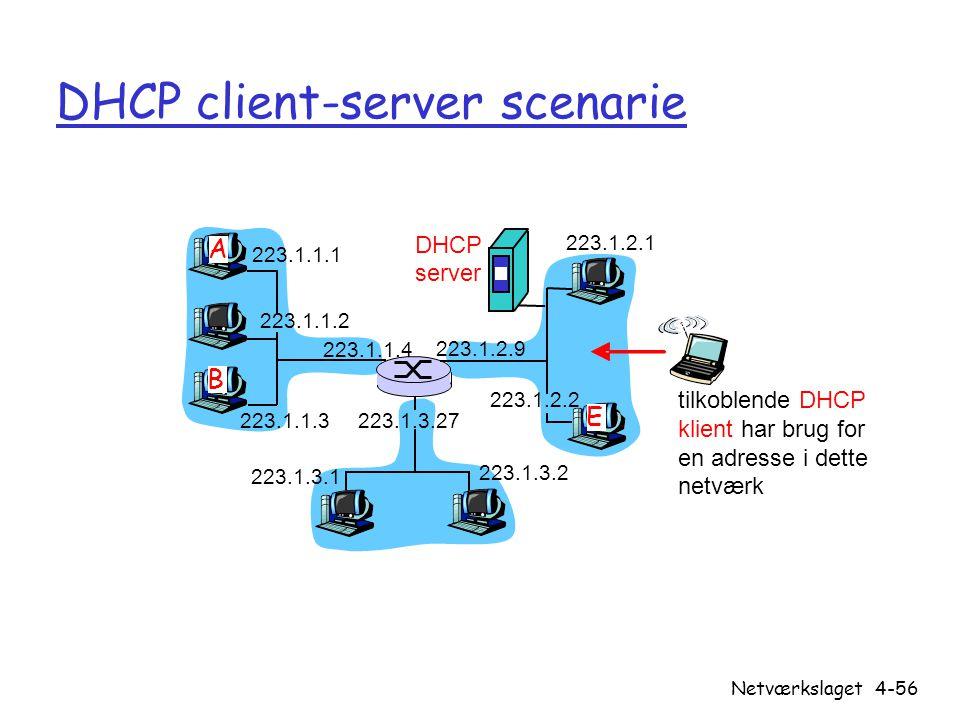 DHCP client-server scenarie