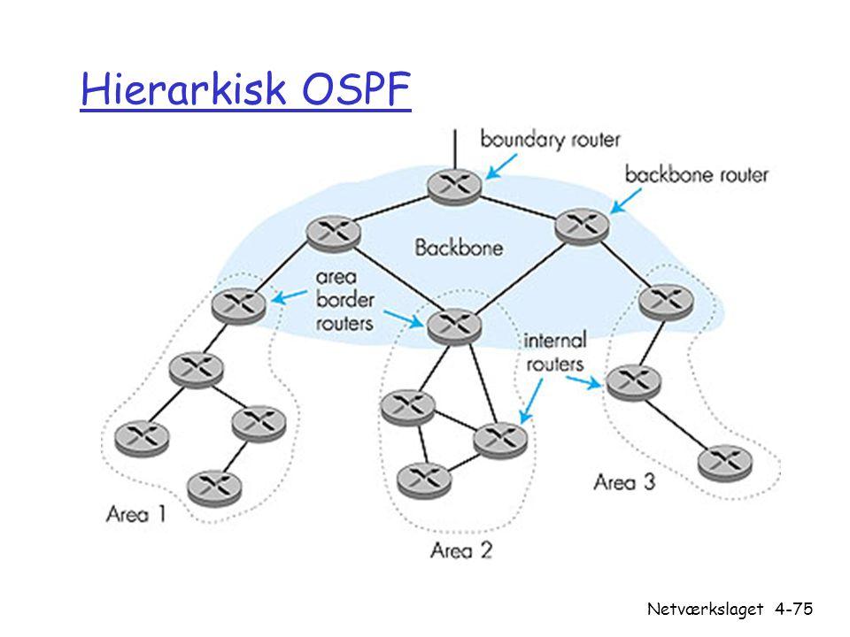 Hierarkisk OSPF Netværkslaget
