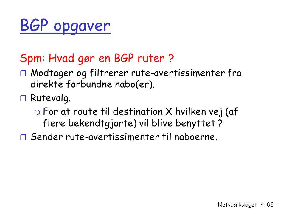BGP opgaver Spm: Hvad gør en BGP ruter