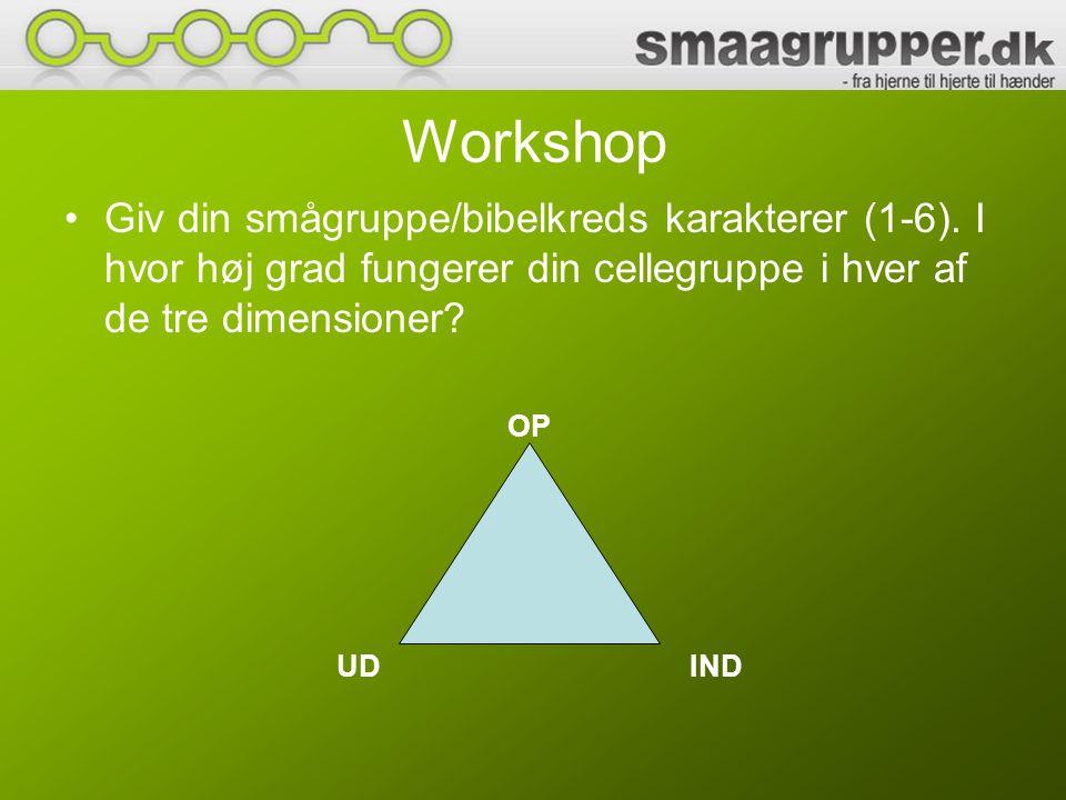 Workshop Giv din smågruppe/bibelkreds karakterer (1-6). I hvor høj grad fungerer din cellegruppe i hver af de tre dimensioner