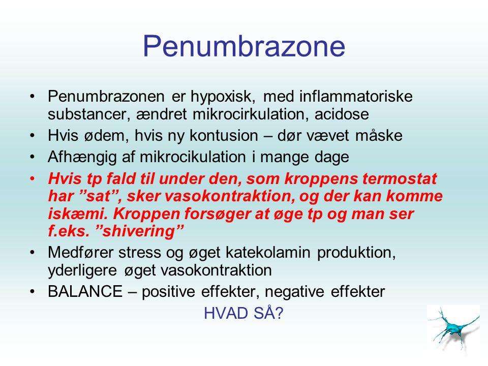 Penumbrazone Penumbrazonen er hypoxisk, med inflammatoriske substancer, ændret mikrocirkulation, acidose.