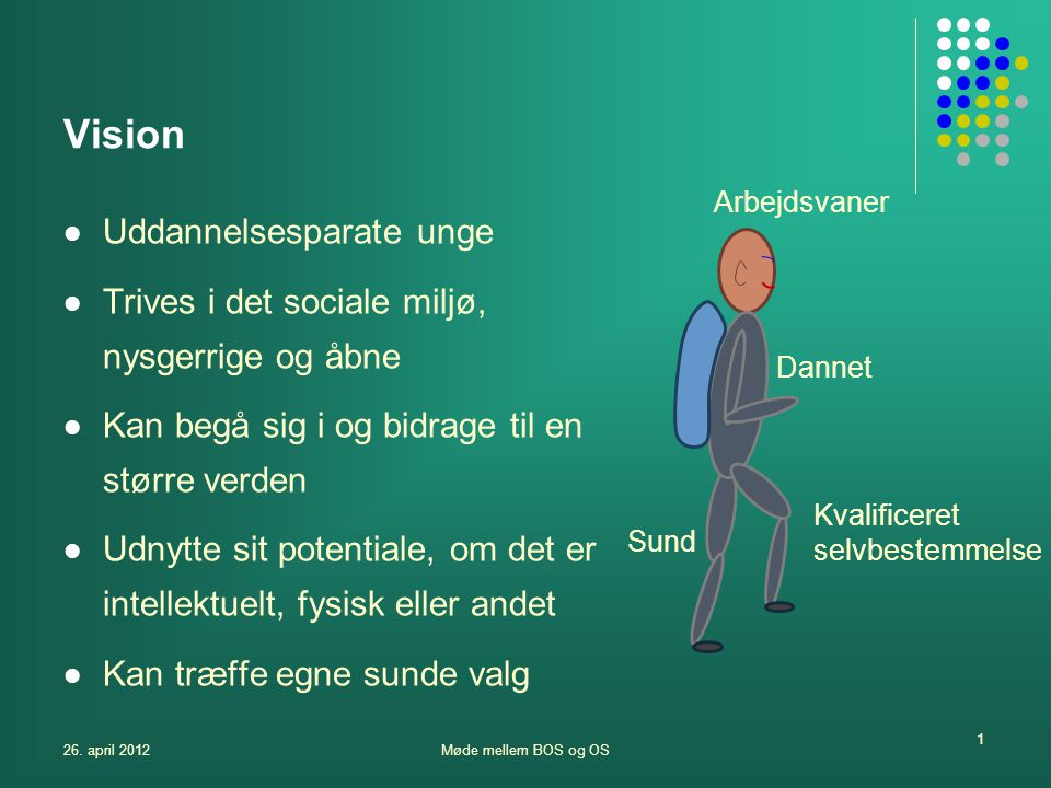 Vision Uddannelsesparate unge