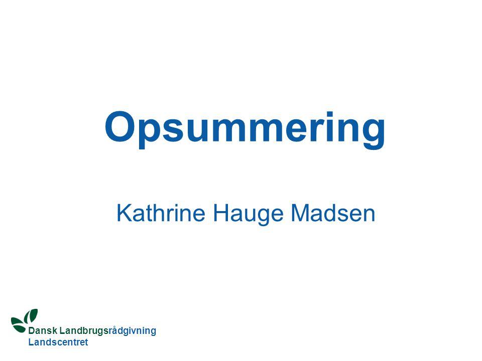 Opsummering Kathrine Hauge Madsen