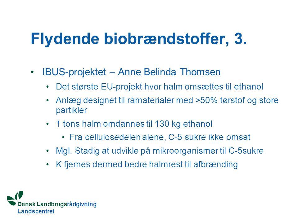 Flydende biobrændstoffer, 3.