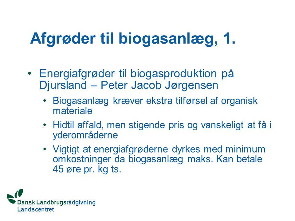 Afgrøder til biogasanlæg, 1.