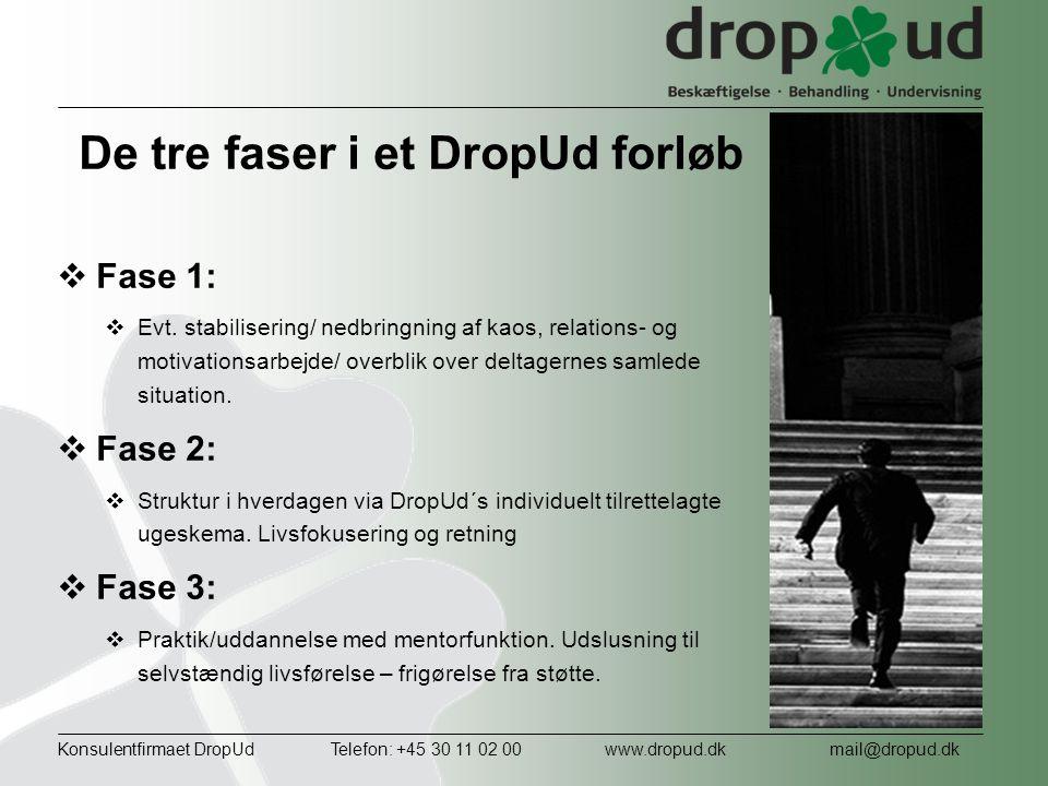 De tre faser i et DropUd forløb