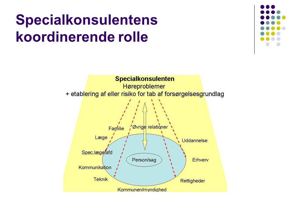 Specialkonsulentens koordinerende rolle
