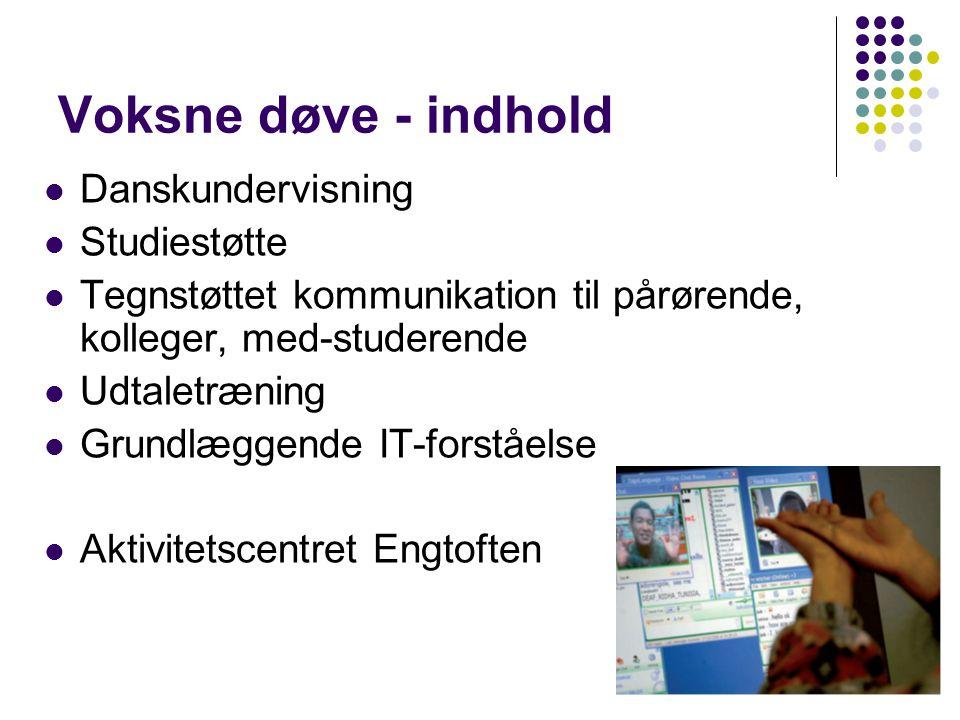 Voksne døve - indhold Danskundervisning Studiestøtte