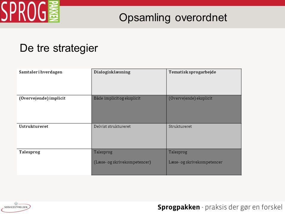 Opsamling overordnet De tre strategier Samtaler i hverdagen