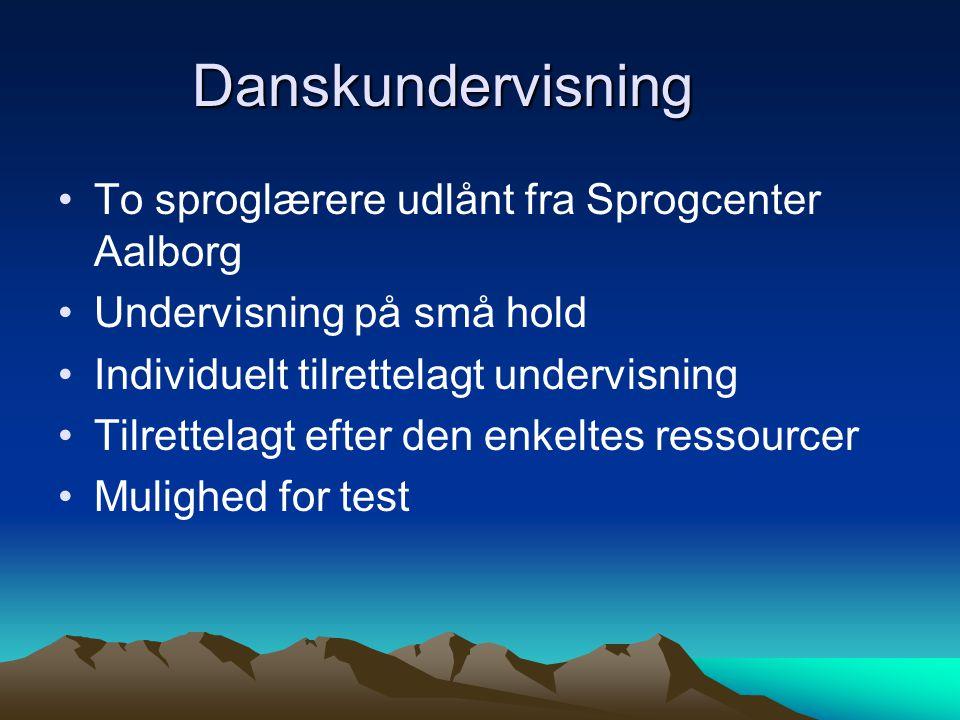 Danskundervisning To sproglærere udlånt fra Sprogcenter Aalborg