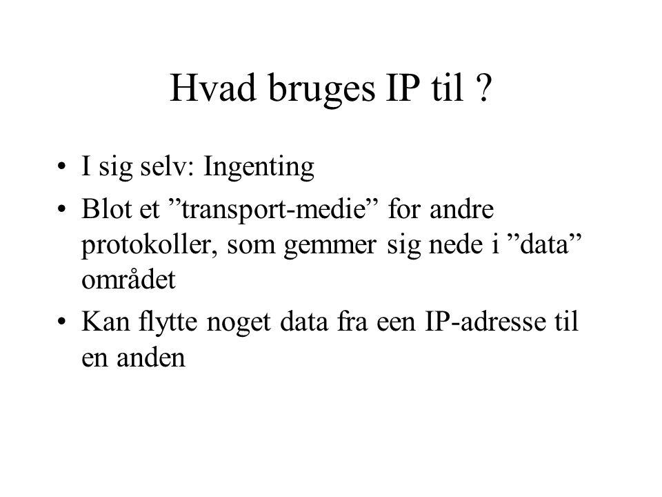 Hvad bruges IP til I sig selv: Ingenting