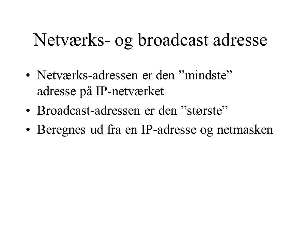 Netværks- og broadcast adresse