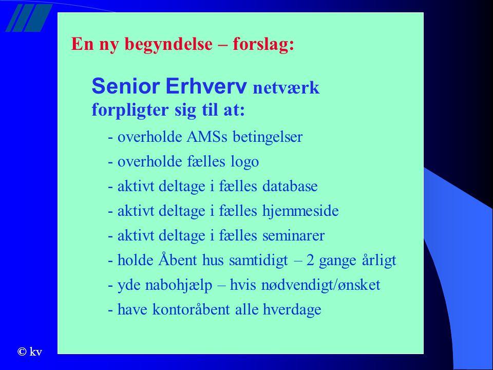 Senior Erhverv netværk
