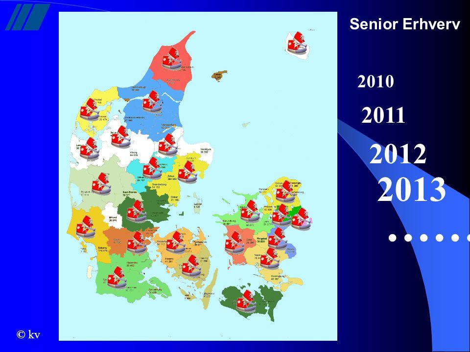 Senior Erhverv 2010 2011 2012 2013 ……