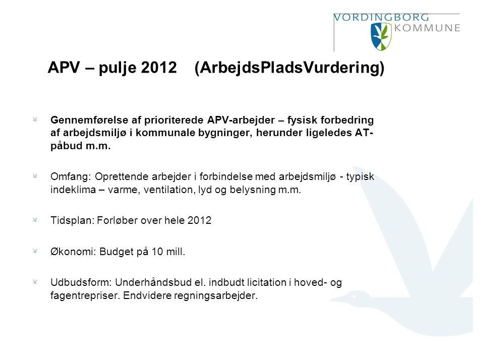APV – pulje 2012 (ArbejdsPladsVurdering)