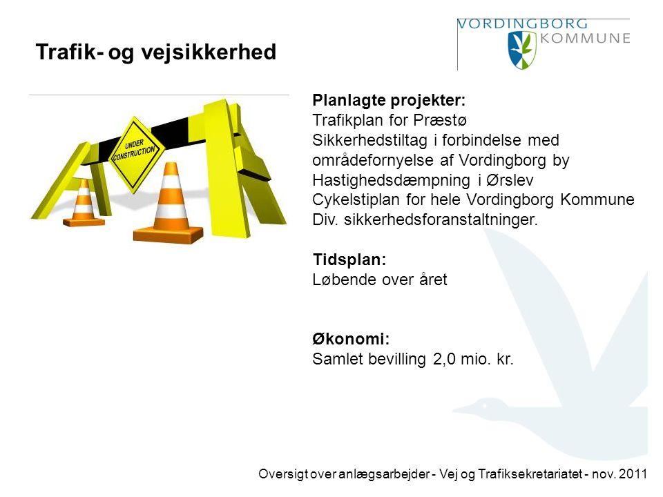 Trafik- og vejsikkerhed