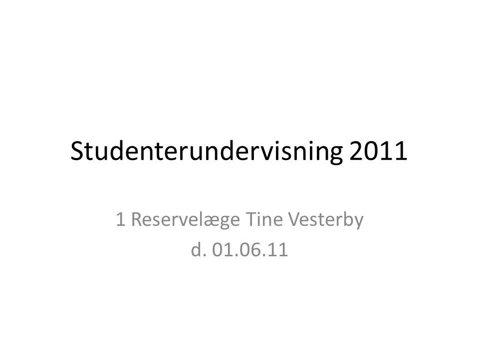 Studenterundervisning 2011