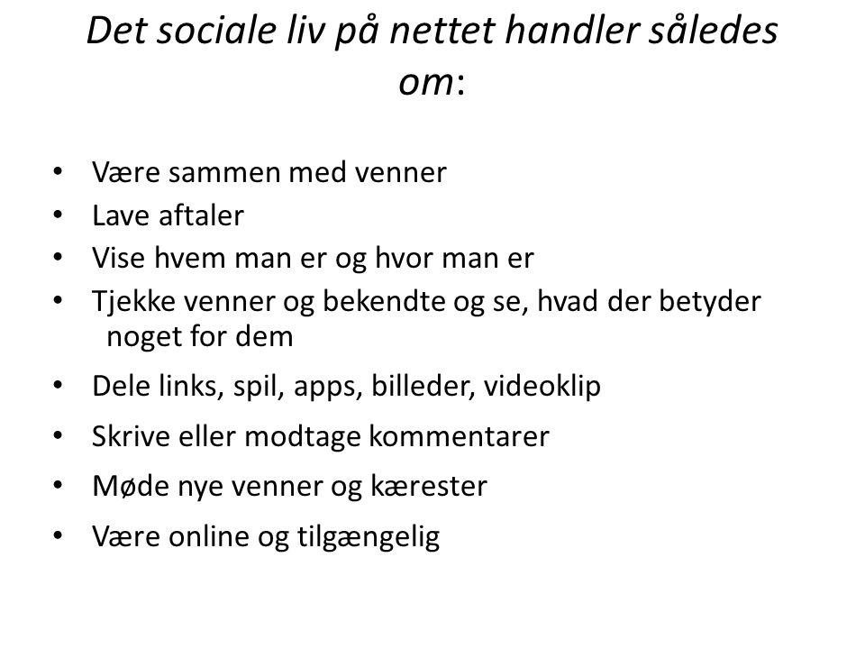 Det sociale liv på nettet handler således om:
