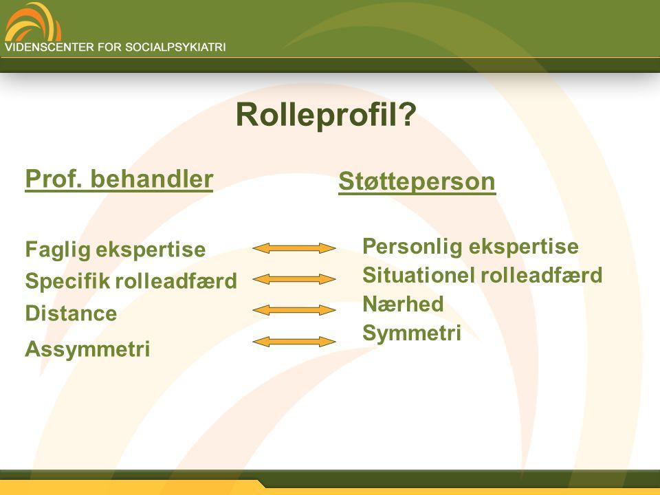 Rolleprofil Prof. behandler Støtteperson Faglig ekspertise