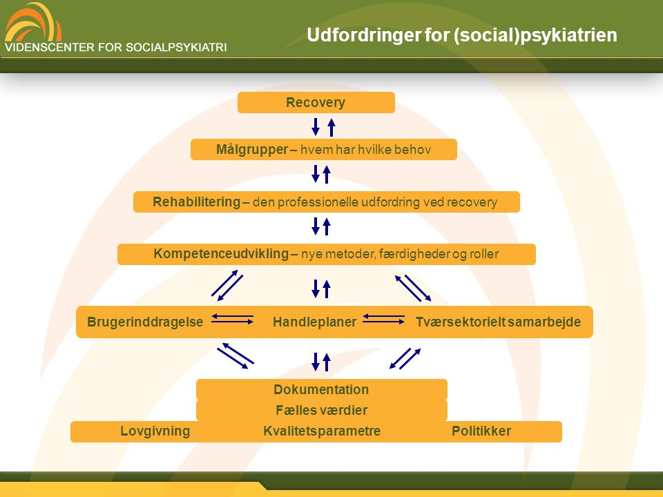 Udfordringer for (social)psykiatrien
