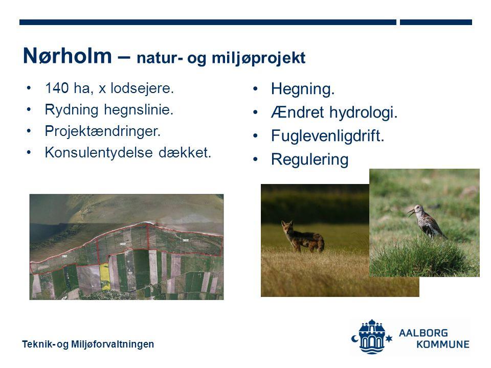 Nørholm – natur- og miljøprojekt