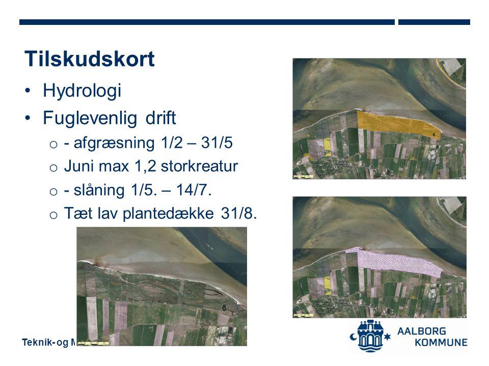 Tilskudskort Hydrologi Fuglevenlig drift - afgræsning 1/2 – 31/5