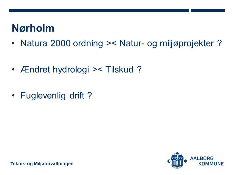 Nørholm Natura 2000 ordning >< Natur- og miljøprojekter