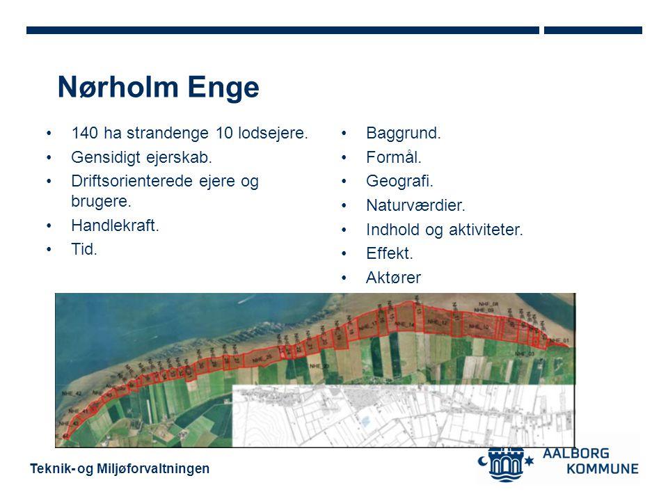 Nørholm Enge 140 ha strandenge 10 lodsejere. Gensidigt ejerskab.