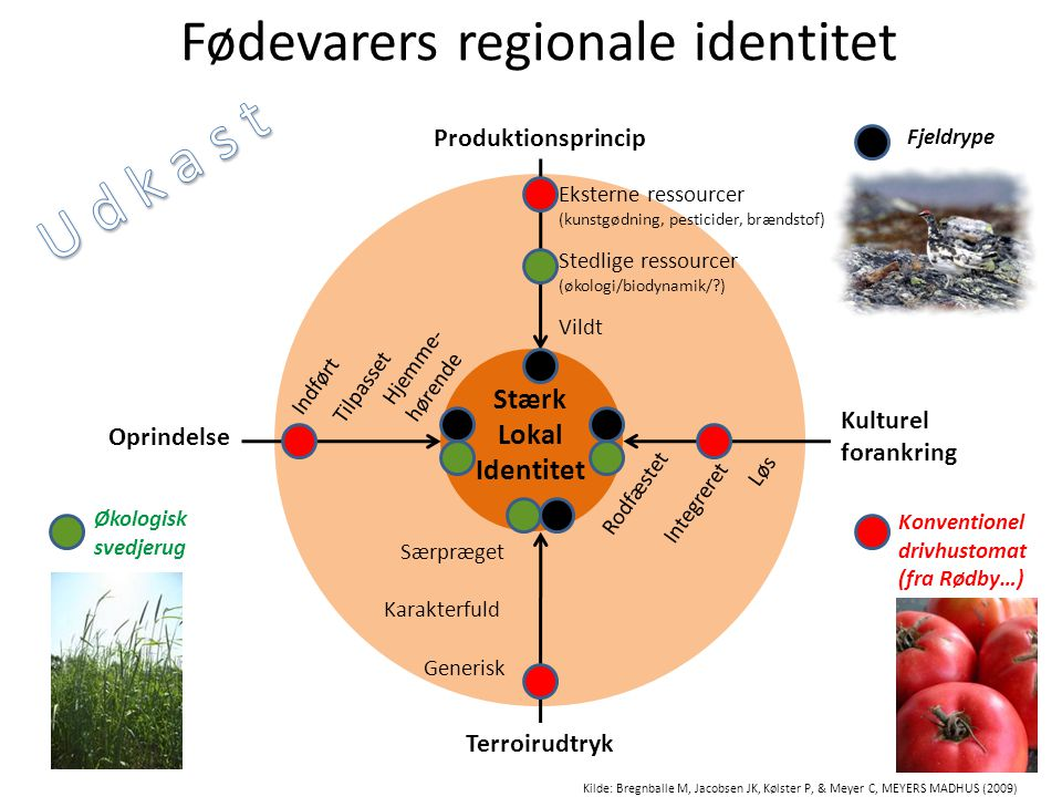 Fødevarers regionale identitet