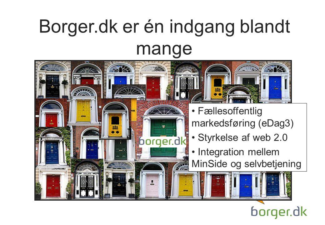 Borger.dk er én indgang blandt mange