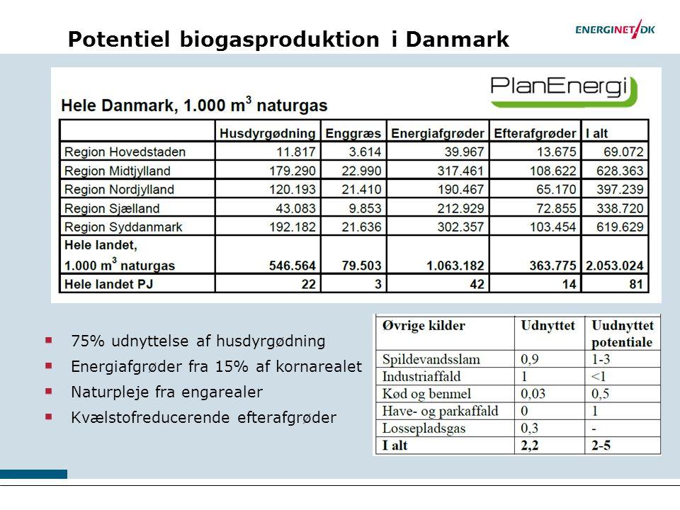 Potentiel biogasproduktion i Danmark