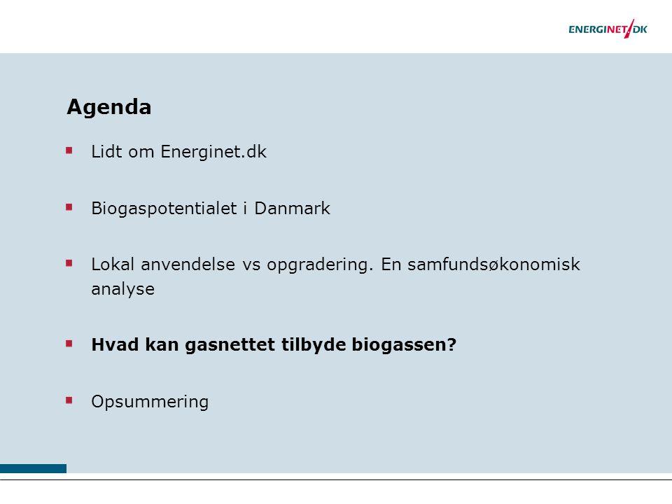 Agenda Lidt om Energinet.dk Biogaspotentialet i Danmark