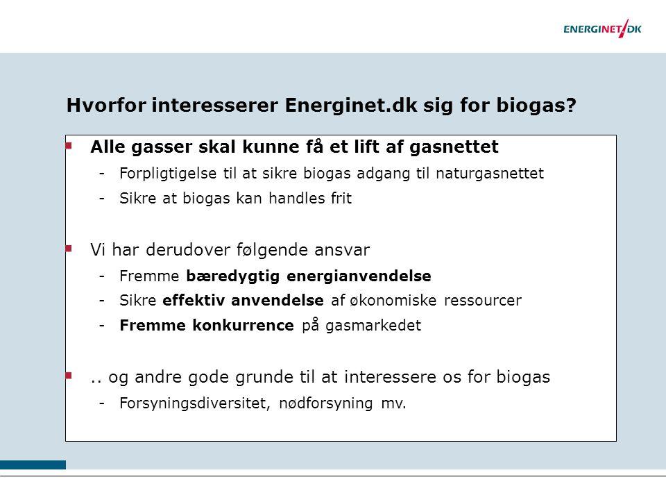 Hvorfor interesserer Energinet.dk sig for biogas