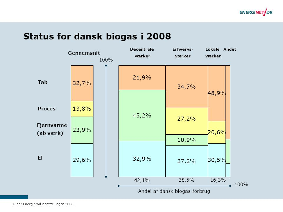 Status for dansk biogas i 2008