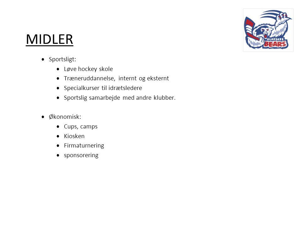 MIDLER Sportsligt: Løve hockey skole