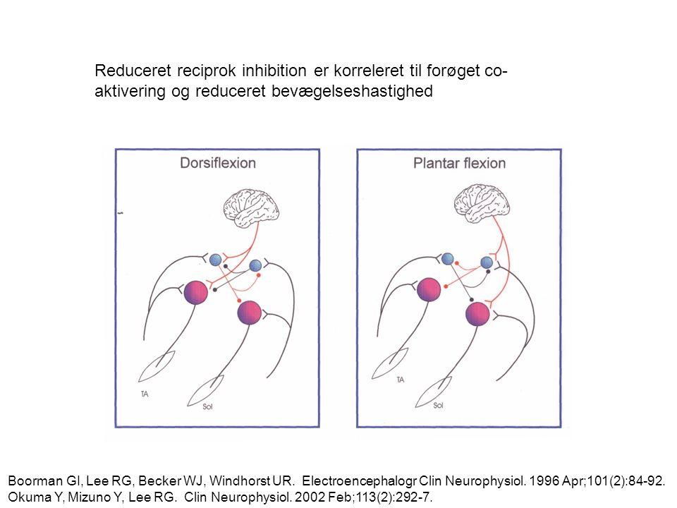 Reduceret reciprok inhibition er korreleret til forøget co-aktivering og reduceret bevægelseshastighed