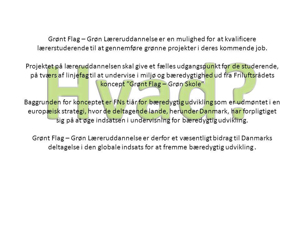 Grønt Flag – Grøn Læreruddannelse er en mulighed for at kvalificere lærerstuderende til at gennemføre grønne projekter i deres kommende job.