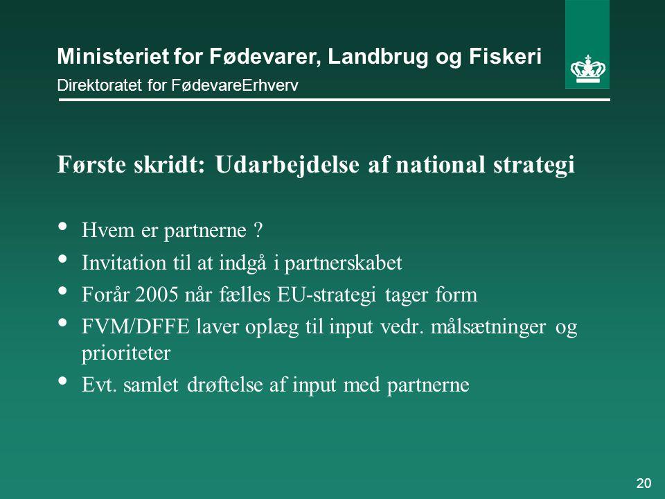 Første skridt: Udarbejdelse af national strategi