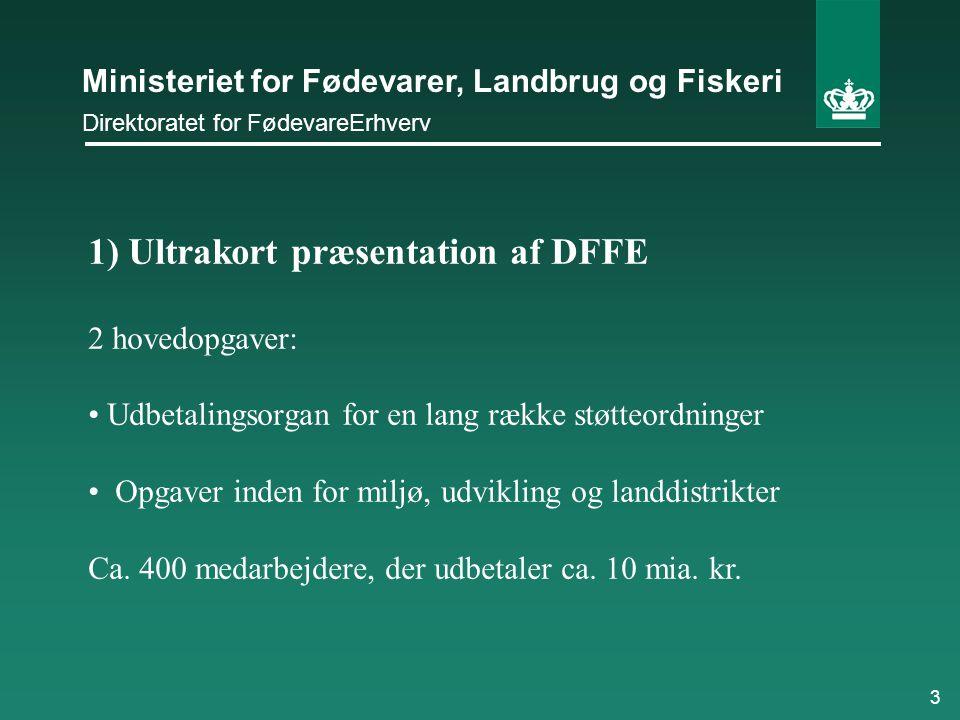 1) Ultrakort præsentation af DFFE