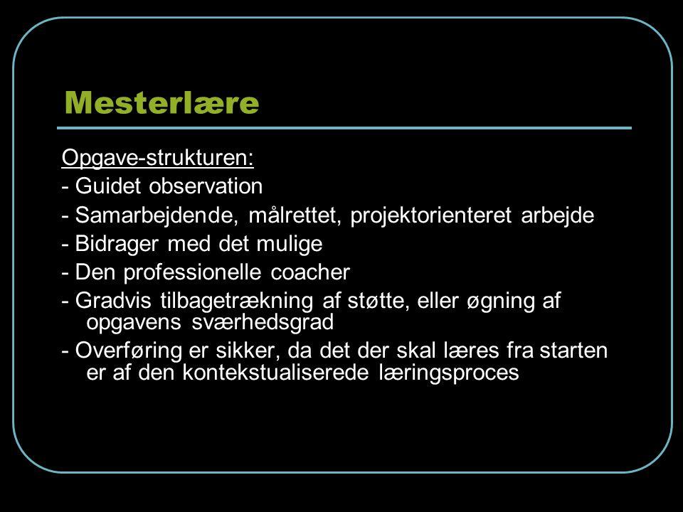 Mesterlære Opgave-strukturen: - Guidet observation