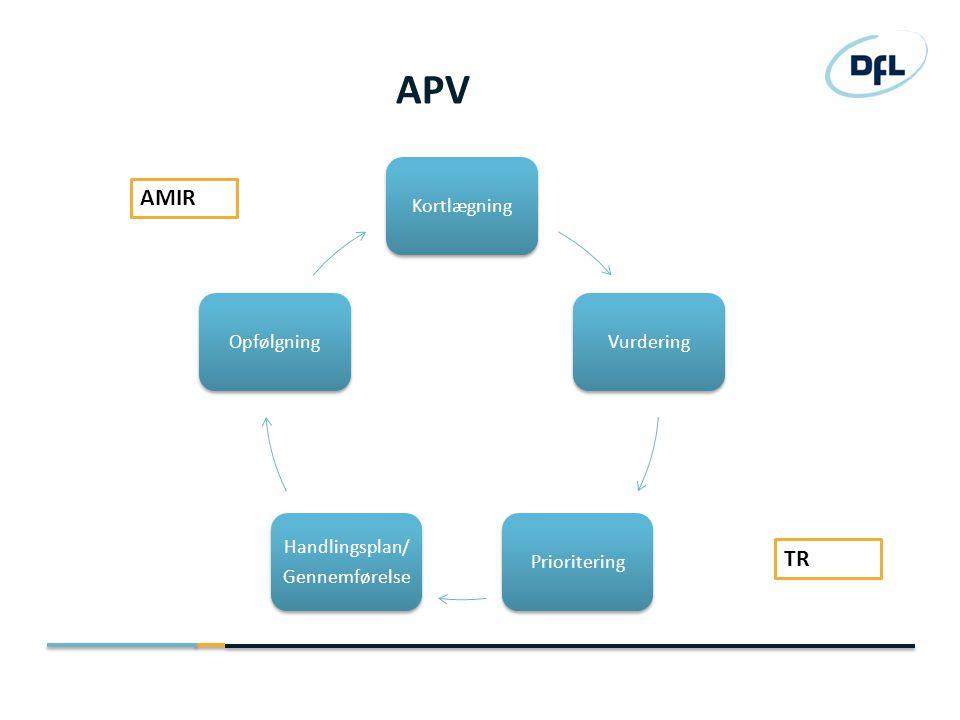 APV AMIR TR Kortlægning Vurdering Prioritering Gennemførelse
